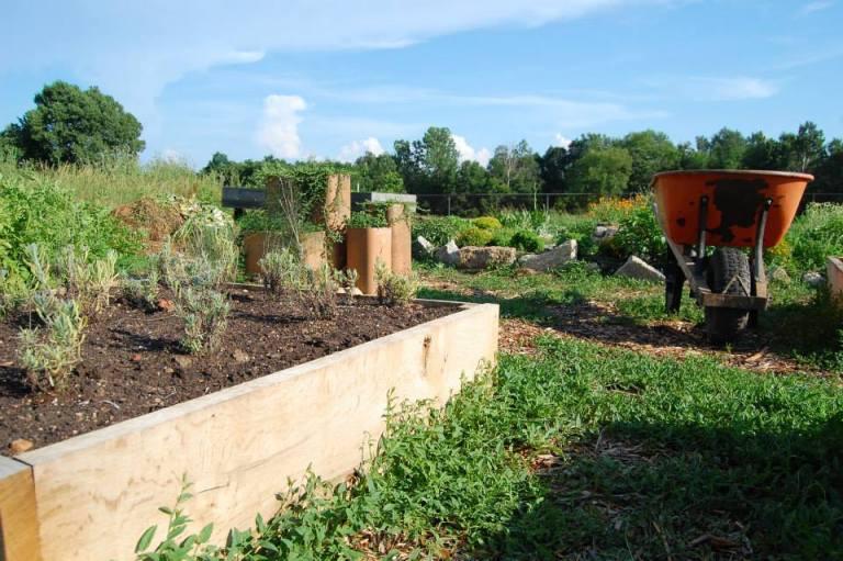 Campus Farm
